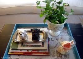 Decorating With Trays On Coffee Tables Coffee Table Tray Decor Tray Coffee Table Tray Decor 44