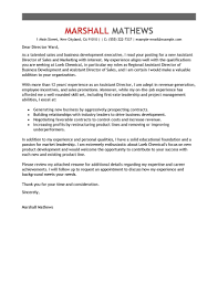 Leading Professional Assistant Director Cover Letter Examples