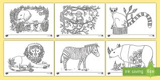 Small Picture Africa Mindfulness Colouring Pages african animals
