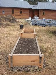 macrocarpa garden beds nelson