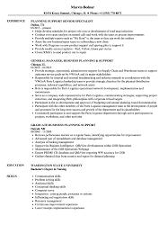 Planning Support Resume Samples Velvet Jobs