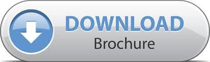Image result for download brochure button