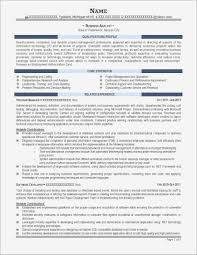 Business Analyst Resume Sample Pdf Samples | Business Document