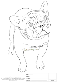 Small Picture marvelous bulldog coloring pages printable with bulldog coloring