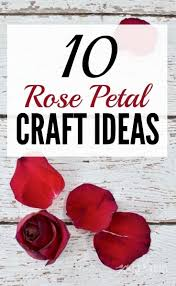 What great ideas to use rose petals from Valentine's Day, a wedding or an  anniversary