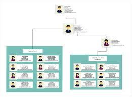 Employee Organizational Chart Can An Organizational Chart Really Make You Better At Your
