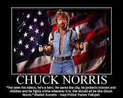 Chuck Norris Quotes Adorable Chuck Norris Quotes A Quote World
