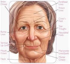 face fillers treatment lip enhancement