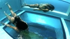 glass bottom pool only the brave dare take it on image cover images glass bottom pool