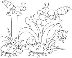 Spring Colouring Pages For Kindergarten Spring Coloring Sheets For