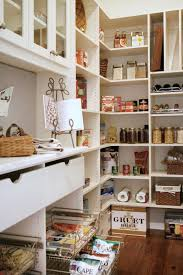 amazing home the best of pantry shelving ideas in 15 and kitchen patches pantry shelving