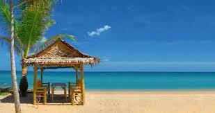20 perfect florida honeymoon vacations