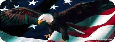 eagle on the american flag facebook cover
