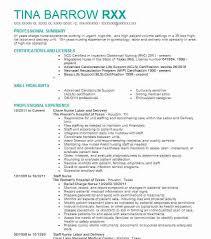 Resume For Nurses Noxdefense Com