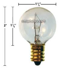 24V 5 WATT SPORTS ARENA GAME BULB Pack 25 bulbs 219E24V5W