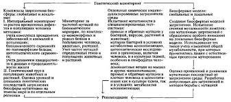 Дипломная работа на тему административные правонарушения и  Административные правонарушения