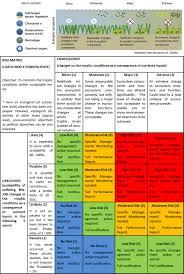 Qualitative Risk Analysis Consequence X Likelihood Perseus