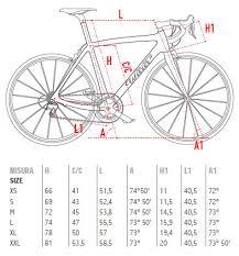 Wilier Road Bike Sizing Chart Wilier Triestina Cento Uno Superleggera Frameset Martys