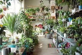 denver garden centers. Garden Stores Denver Centers A