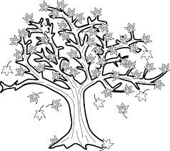 maple leaf coloring pages leaves autumn fall is tree in page with printable