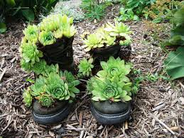 703 Best Container Gardening Ideas Images On Pinterest  Pots Container Garden Ideas Uk