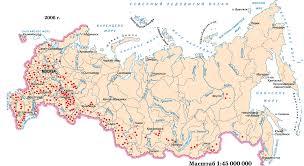 Животноводство России Поголовье крупного рогатого скота 2006 г