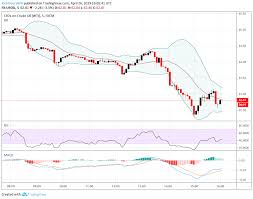 Crude Oil Price Crumbles On Trump Call To Opec Despite Us