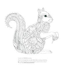 Flying Squirrels Coloring Page Squirrel Ray The Nlchamberinfo