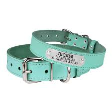 leather dog collar personalized nameplate engraved small medium extra large puppy collar turquoise