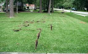 lawn sprinkler system s replacement parts repair omaha diy cost lawn sprinkler system