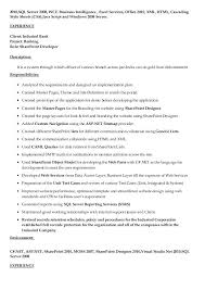 Sharepoint Developer Resume Stunning Sharepoint Developer Resume Foodcityme