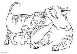 Printable Cat Coloring Pages Cats Colouring Pages Printable Free
