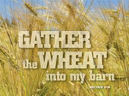 Image result for Matthew 13: 36-43 free images
