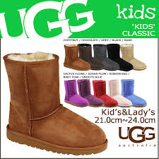 Plum Color Ugg Boots