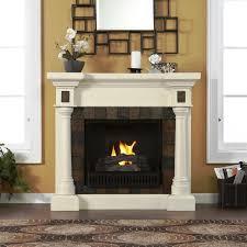 image of gel fuel fireplace insert