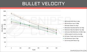 79 Punctilious Ballistics Chart 556