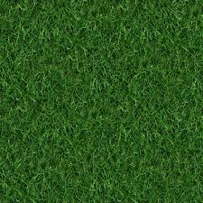 Grass Texture Wallpaper Desktop #h142752854, 1091.3 Kb