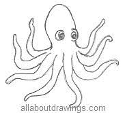 Small Picture Octopus Drawings Vector Octopuspng Coloring Page mosatt
