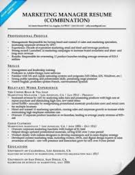 Insurance Agent Resume Sample Superb Insurance Agent Resume Sample