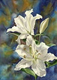 white lilies watercolor alfred ng by mn