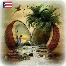 scene in a coconut s find this pin and more on puerto rico paintings