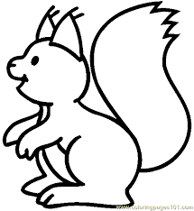 Small Picture Squirrel Coloring Page 07 Coloring Page Free Squirrel Coloring