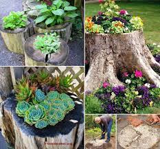 Tree Stump Planter Tutorial Heart Emoticon Cool Idea