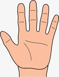 left hand cartoon hd cartoon clipart palm five fingers png image and clipart