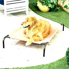Outdoor Pet Bed Canopy Trampoline Dog Beds With Medium Size Of Crown ...