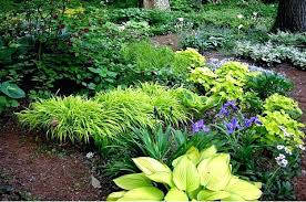 part shade garden ideas more shade garden tips shade garden plans smart design tips and ideas part shade garden ideas