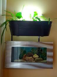 Marco e laquaponica da pianerottolo e quella bonsai u2013 akuaduulza