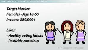 market segmentation why market segments are important to market segment example