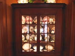 display cabinet lighting fixtures. Corner Cabinet Lighting Led Display Case Light Systems Fixtures