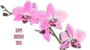 Trina Flowers & Flores - Happy Birthday - YouTube